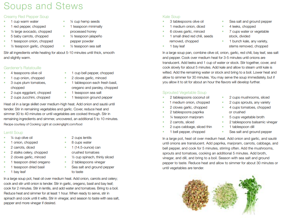 Standard Process 21-Day Cleanse Soup and Stew Recipes